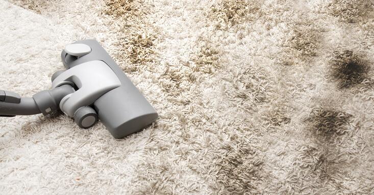 Best Reviewed Steam Vacuum Carpet Cleaners