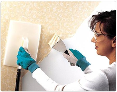 Best Steamer for Wallpaper Cleaning
