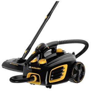 multi steam cleaner for home
