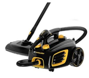 McCulloch steam cleaner for deep clean grout and tile