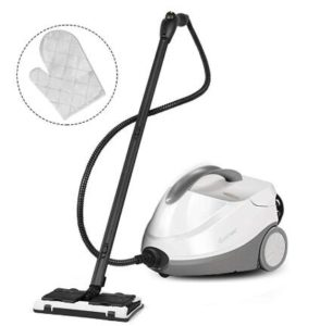 COSTWAY heavy duty steam cleaner with dual tank under $100