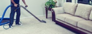 what is the price of professional carpet and couch clean