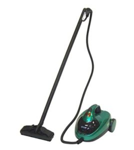 Bissell commercial steamer for ceilings