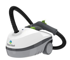 Steamfast Canister Steamer for Autos