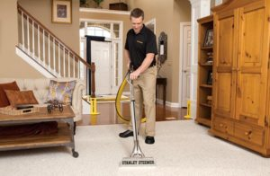 steam cleaner for carpets under 200