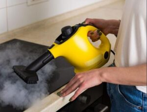 what can i use a handheld steam cleaner for