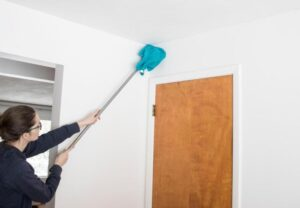 how do you steam clean walls and ceilings