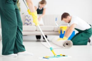 hire carpet cleaning service vs buy carpet cleaner for pet urine