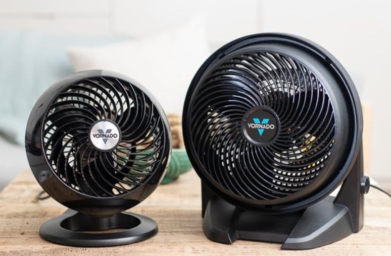 best ceiling fan steam cleaner