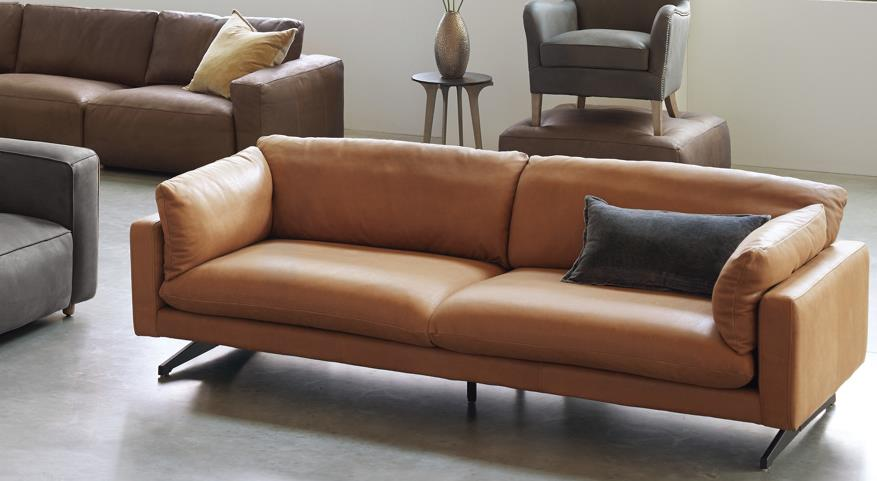 how to get poop smell out of leather couch