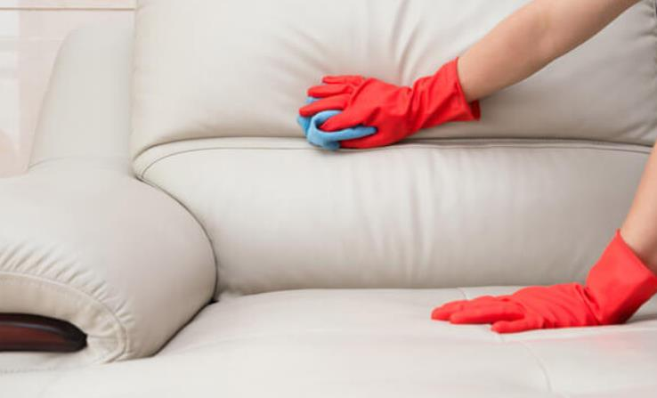 how to disinfect leather sofa